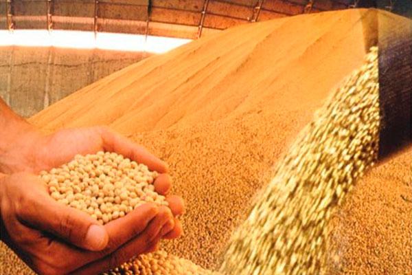 Parte do desempenho negativo do indicador do Banco Central é explicada pelo agronegócio