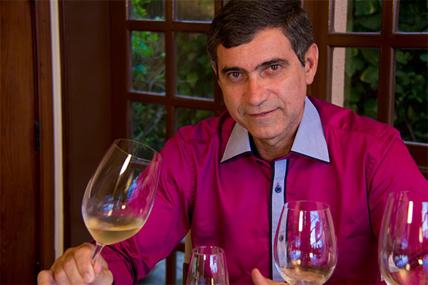 Viagem pelo universo do vinho