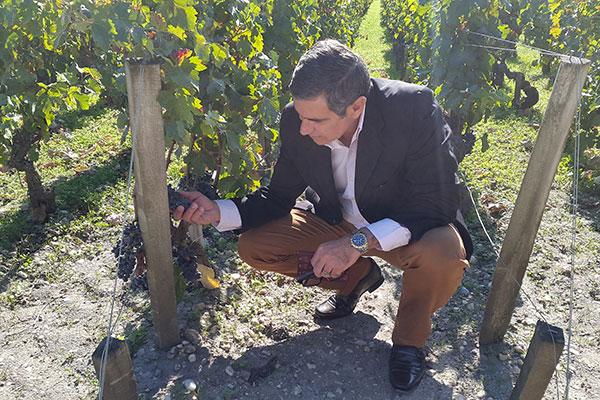 O colunista em visita ao vinhedo Cos D'Estournel, em Bordeaux, uma das regiões mais importantes no universo do vinho