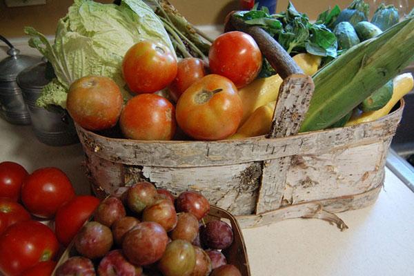 A filosofia macrobiótica mantida: A comida é a base de alimentos naturais e é feita na hora