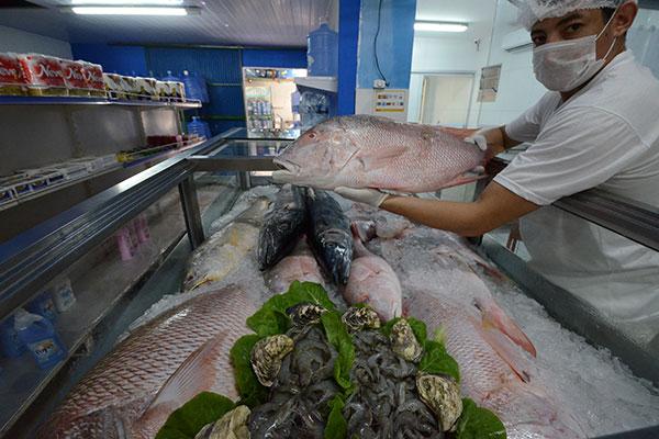 Pescados diversos e frutos do mar para petiscos e ceias