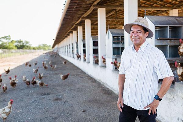 Francisco Veloso destaca modernização e quer que todas as crias saiam dos galinheiros até 2021