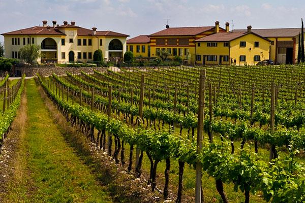 Na região vinícola de Veneto se encontra a bela Monte Del Frà Azienda Agrícola