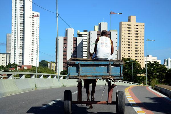 Resultado de imagem para carroças ruas natal