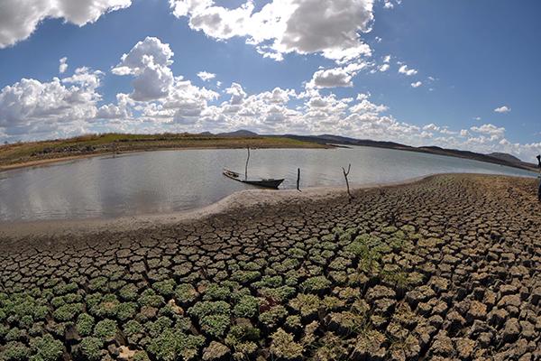Seca resulta em perdas econômicas na agricultura, pecuária e faturamento da Caern
