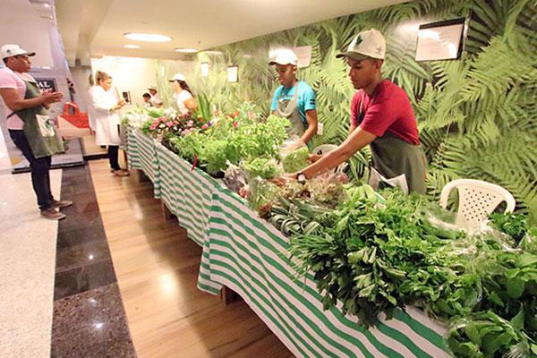 As feiras verdes também chegaram aos shoppings. O Quintal Orgânico é uma aposta que deu certo no Natal Shopping e acontece todos os sábados