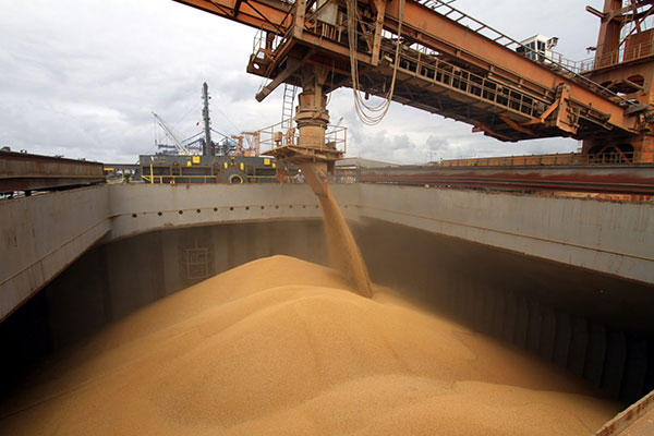 Toneladas de soja aguardam transporte para portos no Brasil