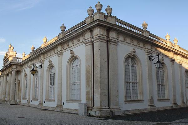Museu da Ciência da universidade portuguesa possui um completo acervo biológico das colônias portuguesas