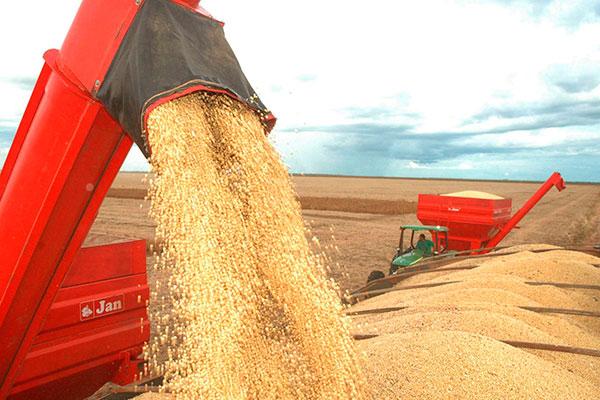Apesar da diminuição, safra deste ano será a 2ª maior da história; produção de soja baterá recorde com 116 milhões de toneladas