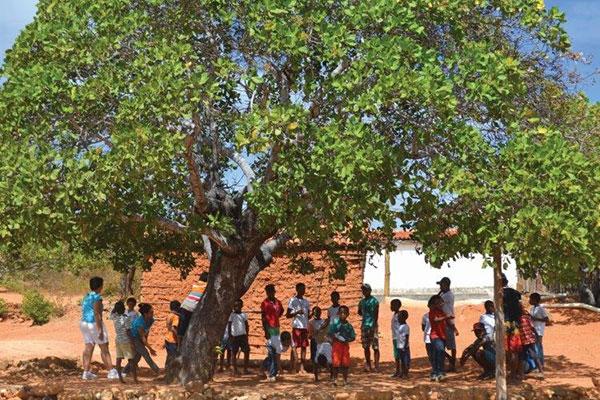 Na 22ª edição do projeto Trilhas Potiguares, 18 municípios serão atendidos pelo programa