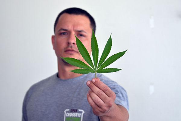Yogi Pacheco tem autorização de cultivo para fins medicinais