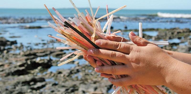 Canudo é sétimo item de lixo mais encontrado nos oceanos