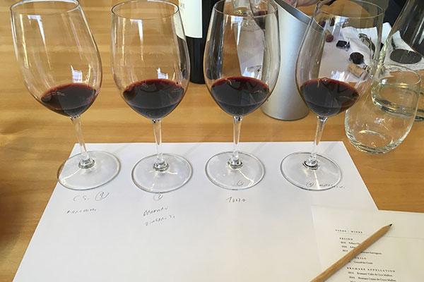 Degustação às cegas da Viña Cobos: Um exemplo de como qualificar vinhos sem se deixar influenciar por rótulos