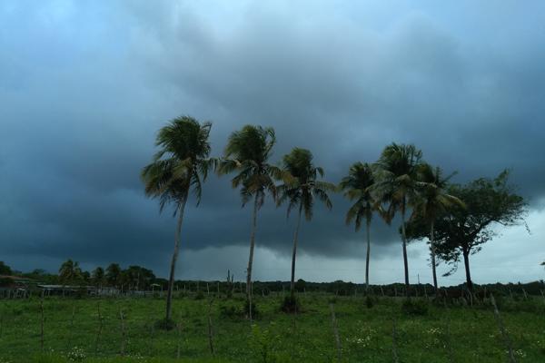 Chuvas tempo fechado