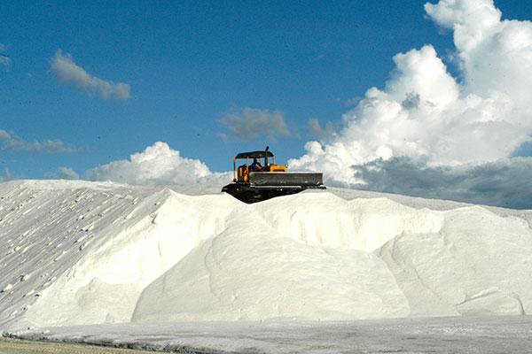 Resultado de imagem para rn produtor de sal 97%