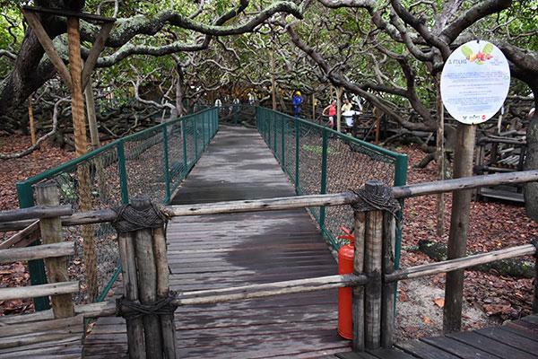 Proteção de passarela é de ferro mas Idema garante que é mais seguro principalmente para pessoas com dificuldade de locomoção