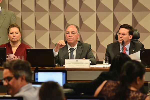 Fernando Bezerra apresenta o relatório sobre a a medida provisória do governo Jair Bolsonaro