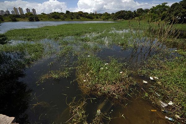 Lagoa do Pirangi é uma das 53 que captam águas das chuvas