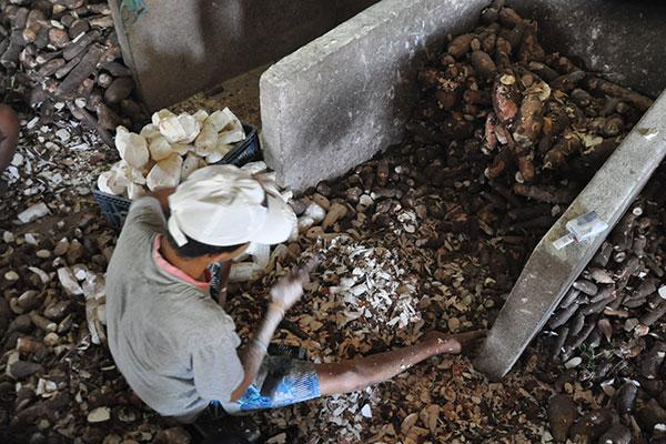 Autoridades alertam para a questão mostrando que o trabalho infantil não é a solução para promover estabilidade familiar