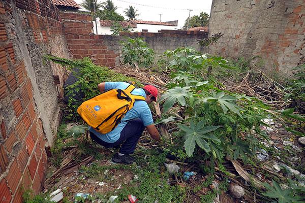 Trabalho dos agentes de endemias previne a proliferação de focos do mosquito transmissor das arboviroses, o Aedes aegypti
