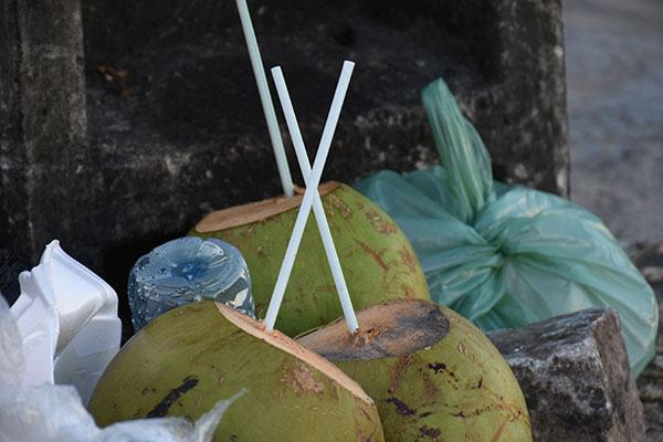 Enquanto não há definição sobre detalhes da fiscalização, os canudos plásticos continuam nos lixos,  poluindo o meio ambiente