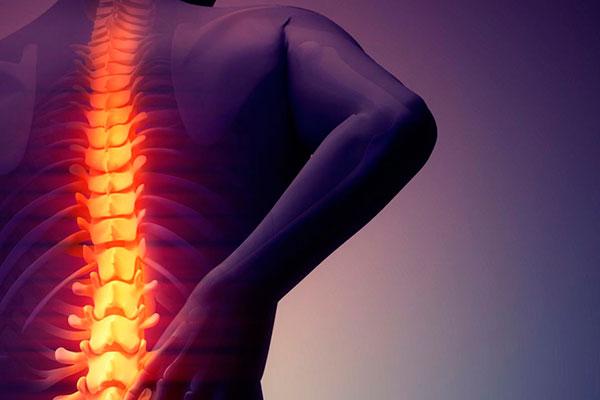 Prevenção, atividade física e correção da postura são pontos importantes para a proteção da coluna vertebral no dia a dia