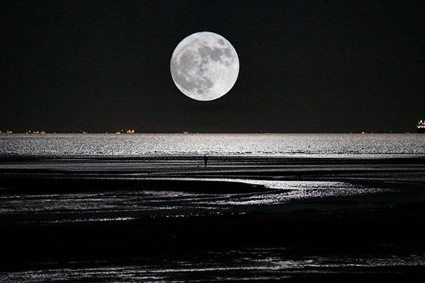 Lua noite