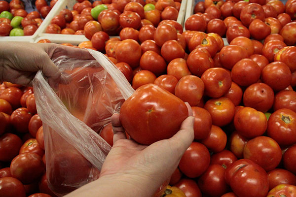 Variação a menor no preço final do conjunto de alimentos foi impulsionada pelo tomate (-34%)