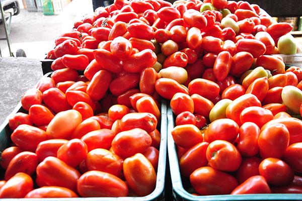 De acordo com pesquisa do Dieese, custo do tomate sofreu a maior redução (5,36%) entre os produtos que compõem a cesta básica