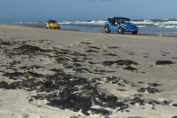 Desde o início do mês passado que as praias do RN vêm registrando a presença de grande quantidade de óleo e recolhimento iniciou apenas em dois municípios