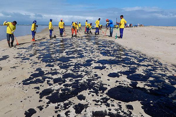 Praia de Carneiros (PE) amanheceu manchadas de petróleo cru
