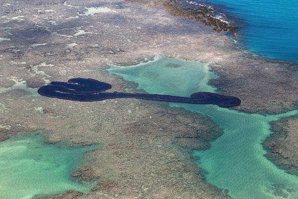O óleo contamina mais de 2,5 mil quilômetros do litoral do Nordeste, desde setembro e já chegou a 238 localidades, segundo o Ibama