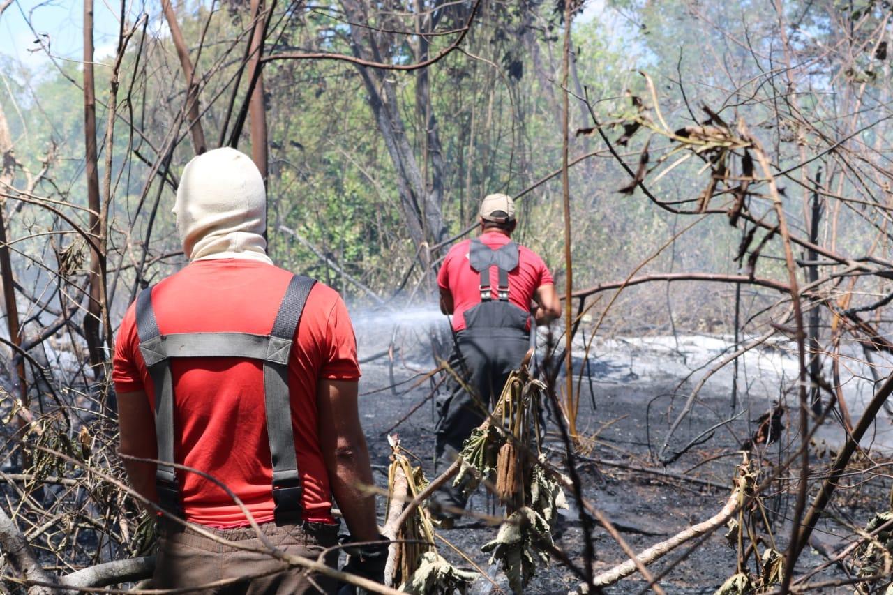 Bombeiros combatem dois incêndios na zona Sul de Natal - Tribuna do Norte - Natal