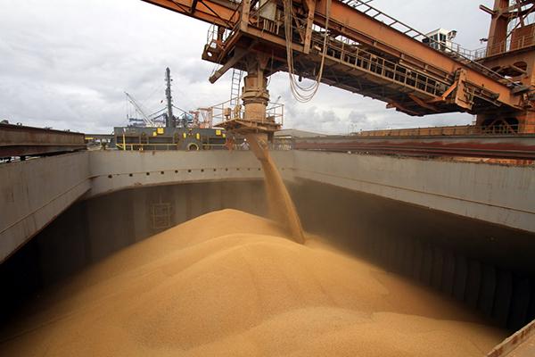 Conforme o Ministério da Economia, as exportações de produtos agropecuários e da indústria extrativa mineral lideram balança
