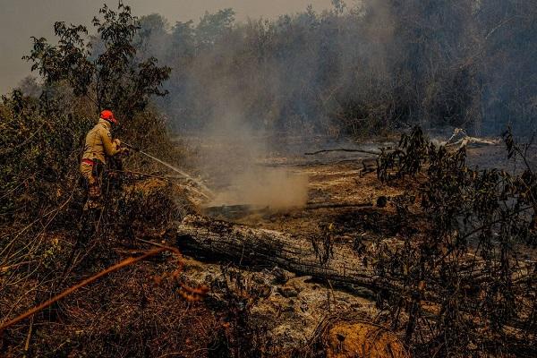 Municípios do Mato Grosso do Sul estão sofrendo estiagem