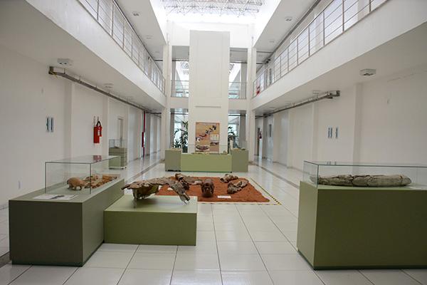 As tradicionais peças do Museu Câmara Cascudo se unem a outras de todo País de forma virtual