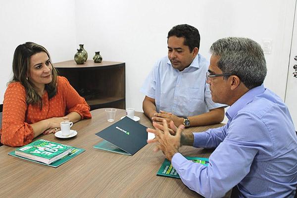 Anacelly de Paula em reunião com membros da Coopmed/RN