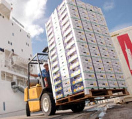 BALAN�A COMERCIAL - O mel�o continua sendo o primeiro produto da pauta de exporta��o