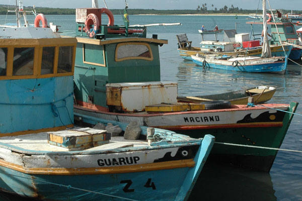 Para se regularizarem, pescadores devem se dirigir até a superintendência do Mapa no RN