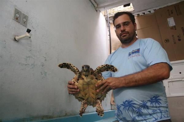 Douglas Brandão, biológo, fala sobre à morte de Tartarugas no liotoral brasileiro