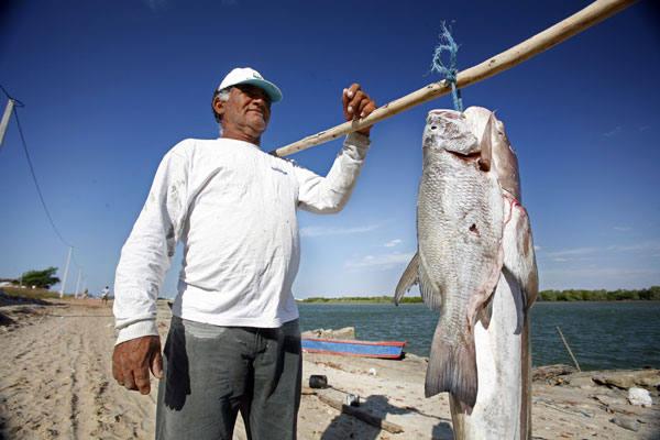 Pesca artesanal é a grande fonte de renda da maior parte da população de Porto do Mangue.  Município quer diversificar economia