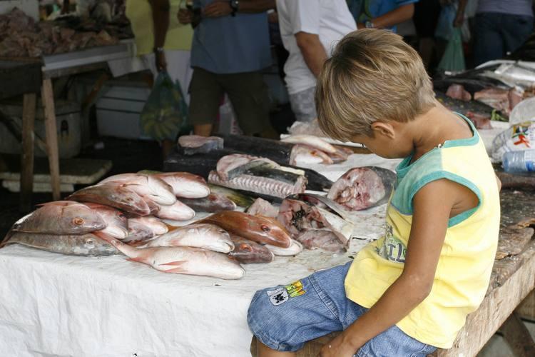 Combate ao trabalho infantil é lembrado no dia 12 de junho