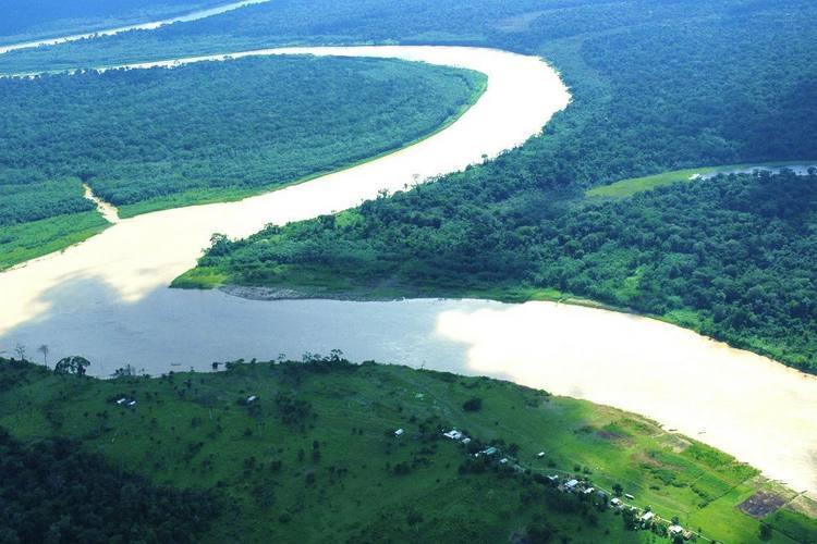 Ambientalistas dizem que áreas de mangues ficariam desprotegidas com o novo Código Florestal