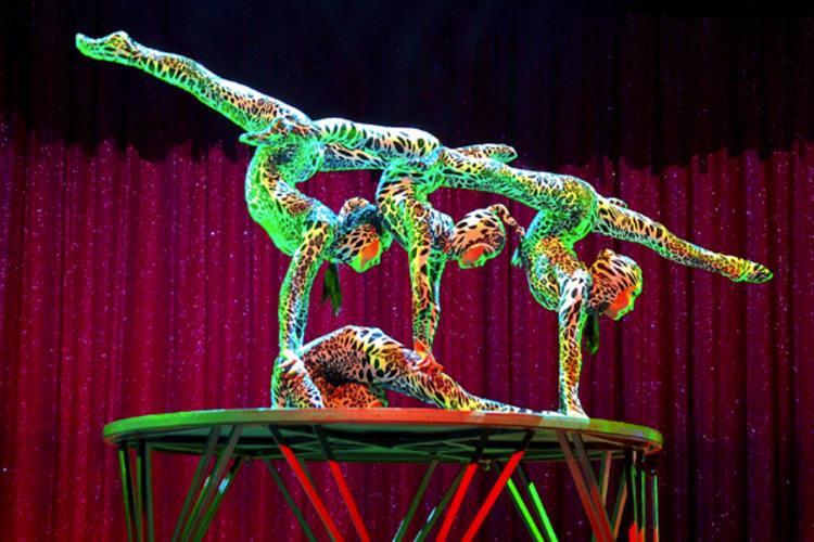 Acrobacias, contorcionismo, aliados a números divertidos de mágica e ilusionismo fazem a cozinha do espetáculo Abrakadabra