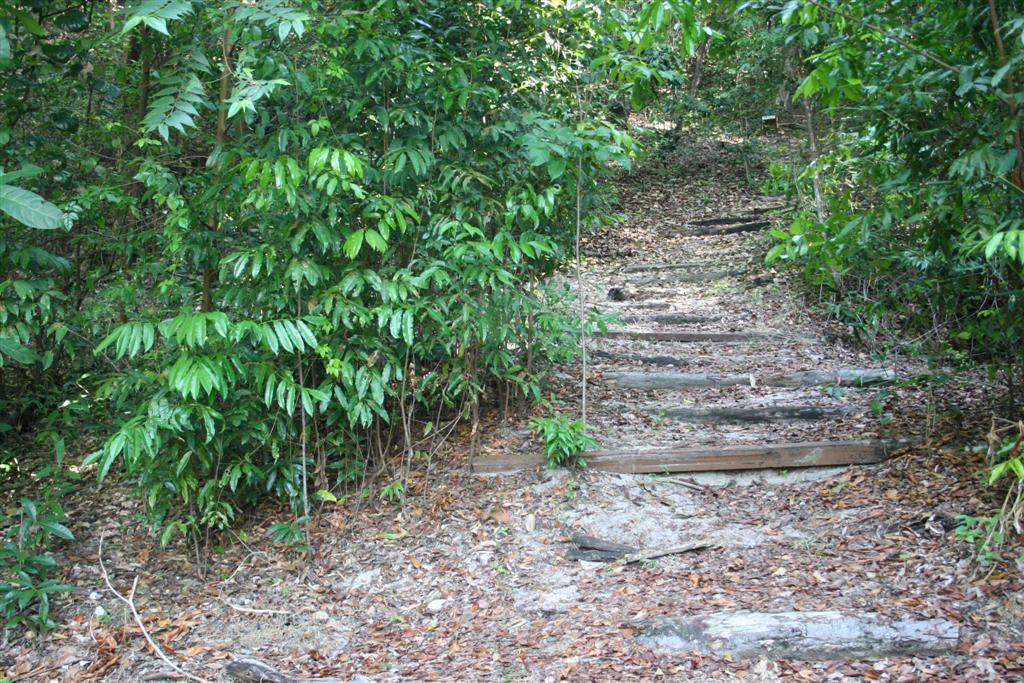 As trilhas também são atrações no Parque das Dunas
