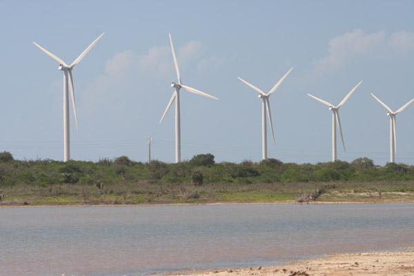 Ao todo, 296 projetos de geração desse tipo de energia foram inscritos. O maior número está no RS