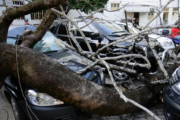 O veículo estava parado no estacionamento do Juizado Especial Civil e Criminal de Natal, na Ribeira, quando uma árvore caiu sobre ele