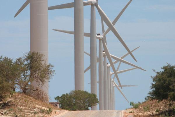 As linhas de transmissão servem para escoar a energia produzida em usinas eólicas, por exemplo