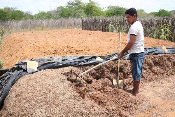 O agricultor José Ferreira Filho diz que a irrigação do Vale do Apodi vai levar desenvolvimento para a área