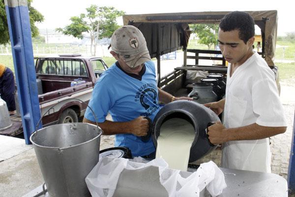 O objetivo das novas regras na produção do leite é aprimorar o controle sanitário do rebanho